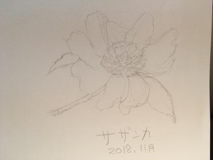 2018-11-23T22:50:41.jpeg