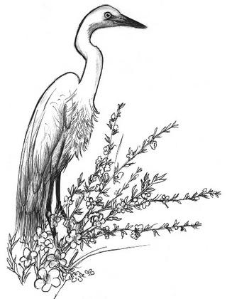 05101-3花に白鷺グレイ目3zv.jpg